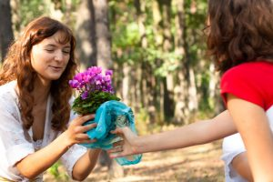 Flower gifts and how to make your purchase